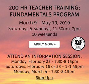 200 Hr Teacher Training: Fundamentals Program Apply/Sign up for information sessions