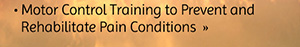 Motor Control Training to Prevent and Rehabilitate Pain Conditions